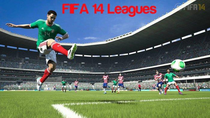 FIFA 14 Leagues
