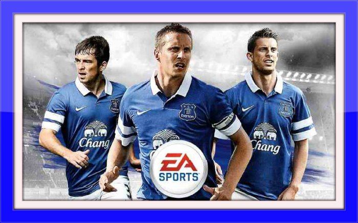 Everton FIFA 14 Game