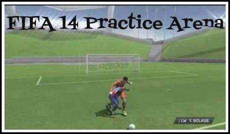 FIFA 14 Practice Arena